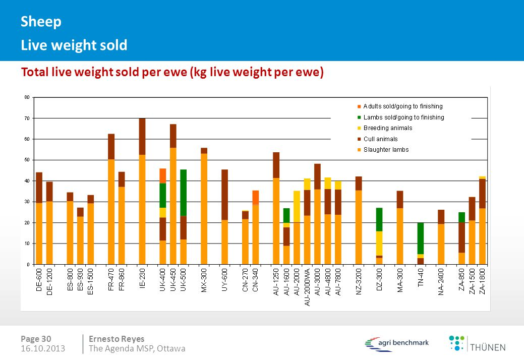 Sheep Live weight sold Total live weight sold per ewe (kg live weight per ewe) Page 30. 16.10.2013.