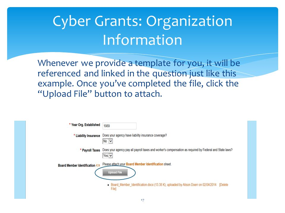 Cyber Grants: Organization Information