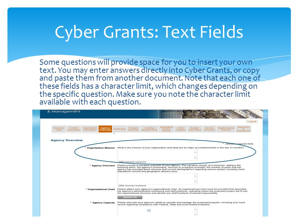 Cyber Grants: Text Fields