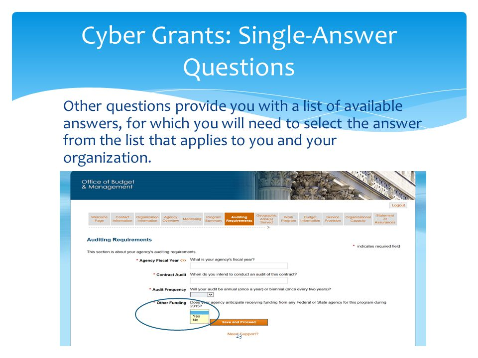 Cyber Grants: Single-Answer Questions