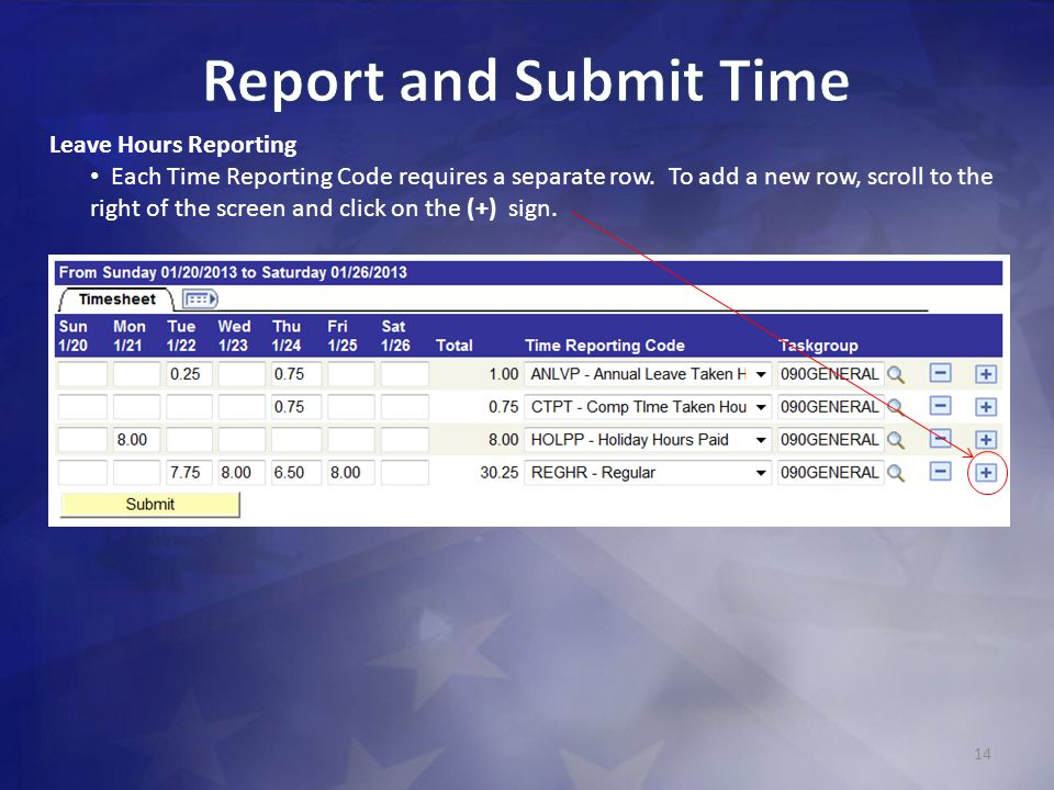 Report and Submit Time Leave Hours Reporting