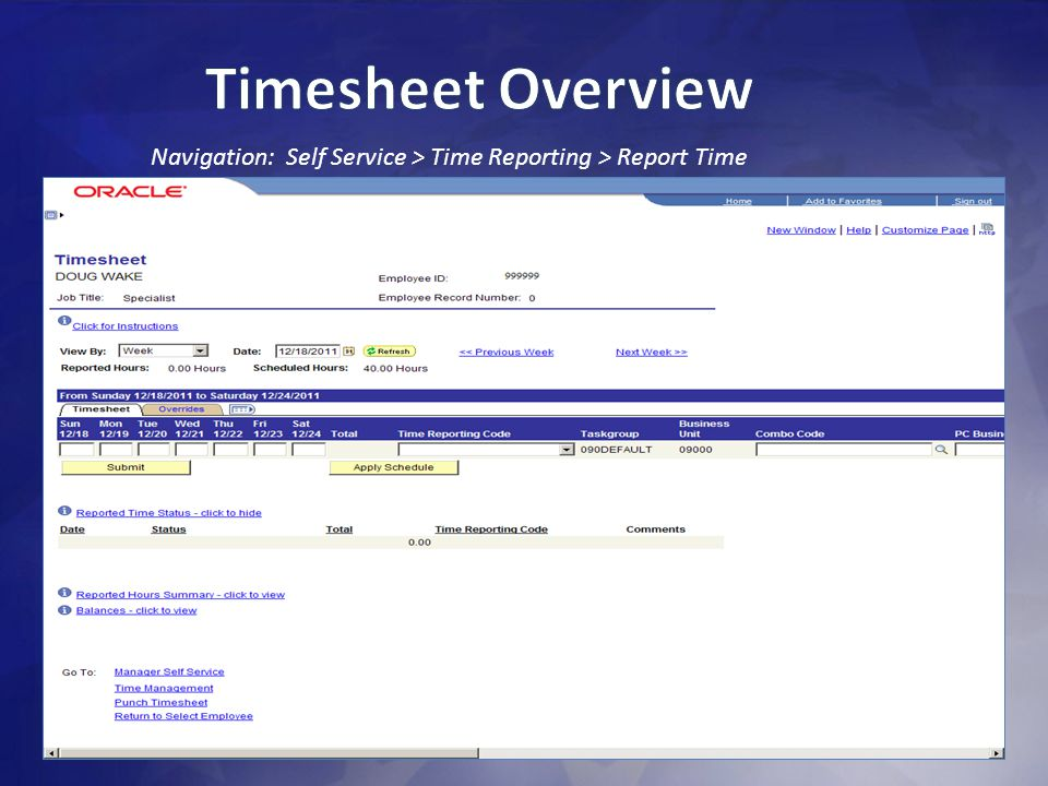 Timesheet Overview Navigation: Self Service > Time Reporting > Report Time