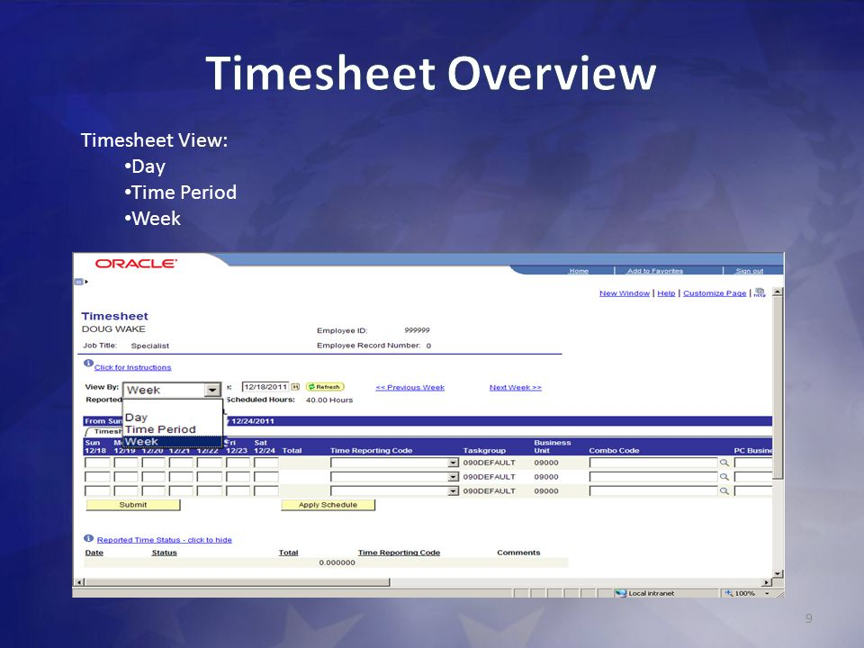 Timesheet Overview Timesheet View: Day Time Period Week