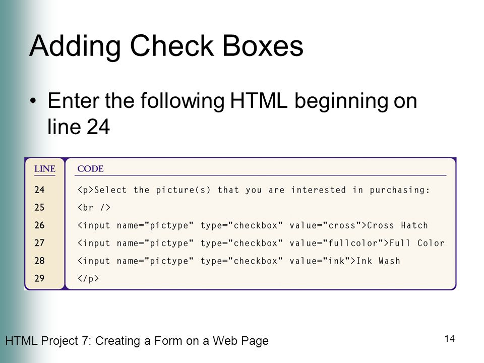 Adding Check Boxes Enter the following HTML beginning on line 24