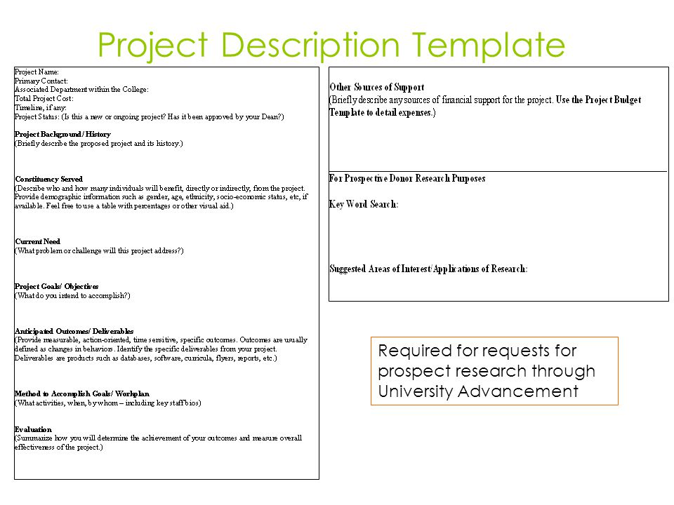 Project Description Template