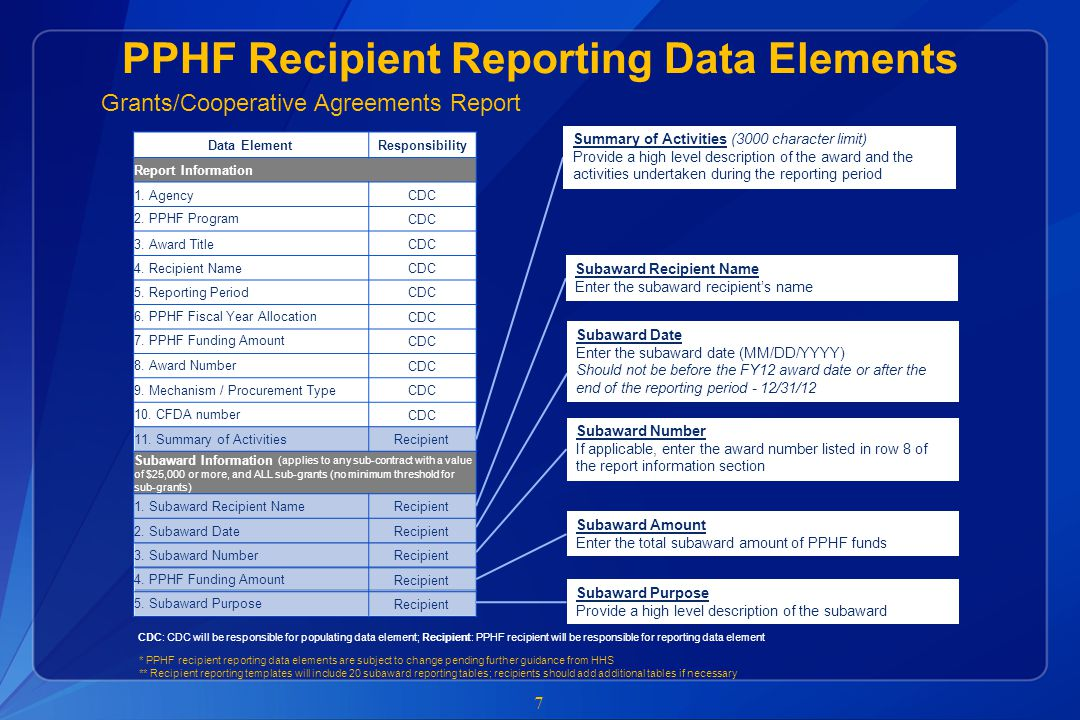 PPHF Recipient Reporting Data Elements