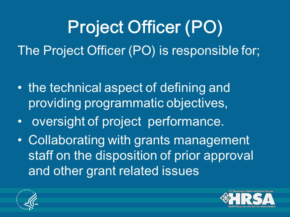 Project Officer (PO) The Project Officer (PO) is responsible for;