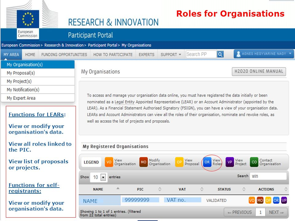 Roles for Organisations