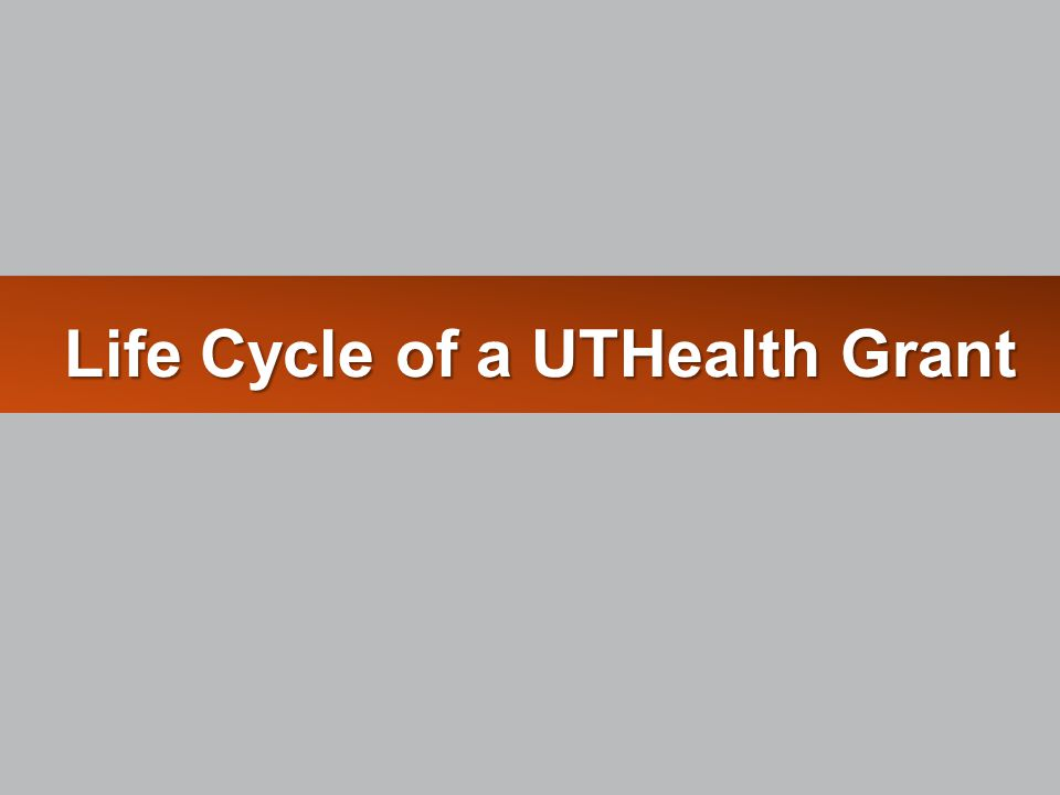 Life Cycle of a UTHealth Grant