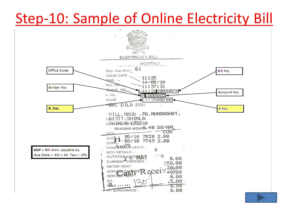 Step-10: Sample of Online Electricity Bill