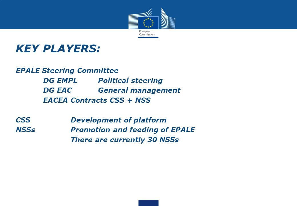KEY PLAYERS: EPALE Steering Committee DG EMPL Political steering