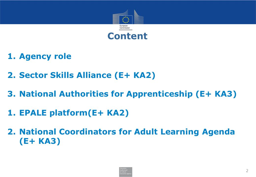 Content Agency role Sector Skills Alliance (E+ KA2)