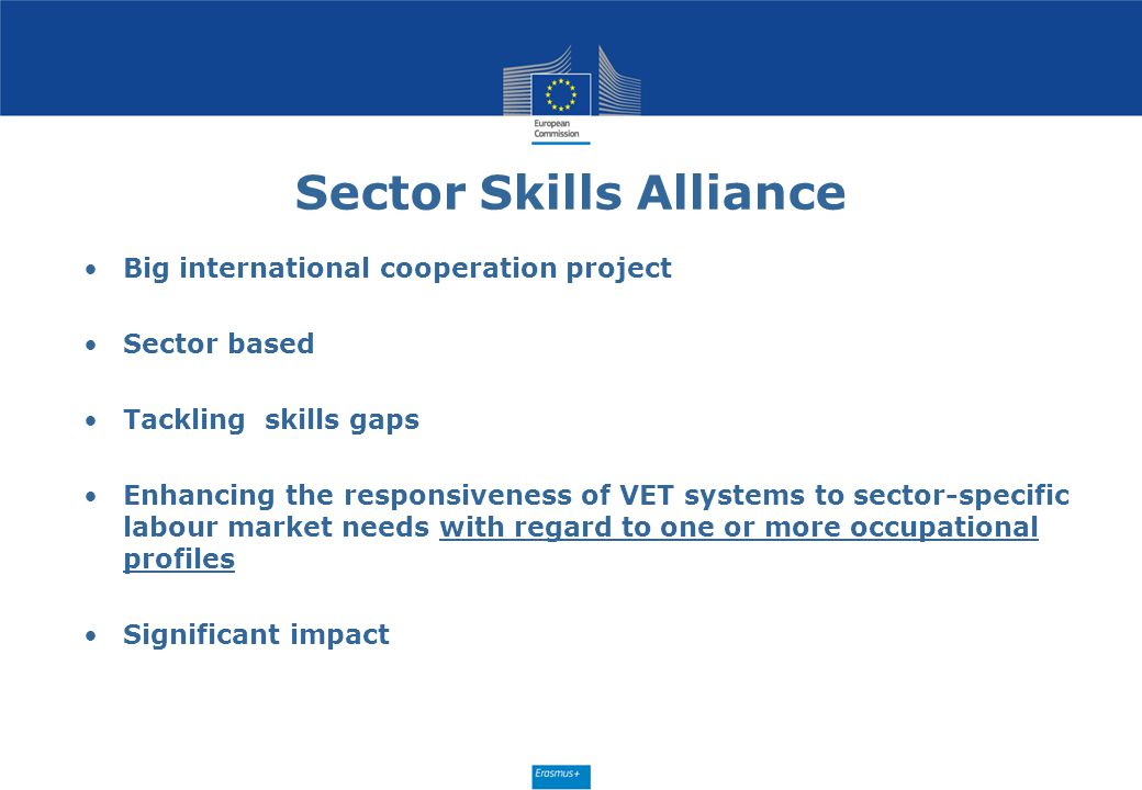 Sector Skills Alliance