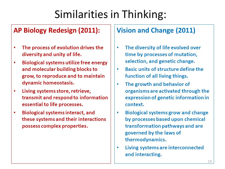 Similarities in Thinking: