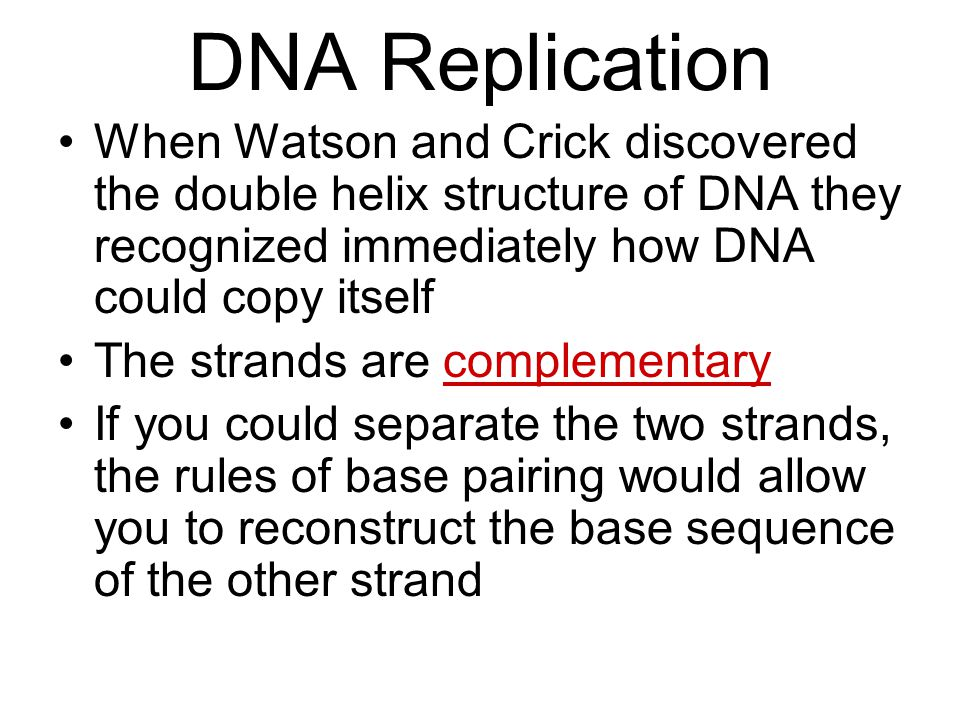 DNA Replication When Watson and Crick discovered the double helix structure of DNA they recognized immediately how DNA could copy itself.