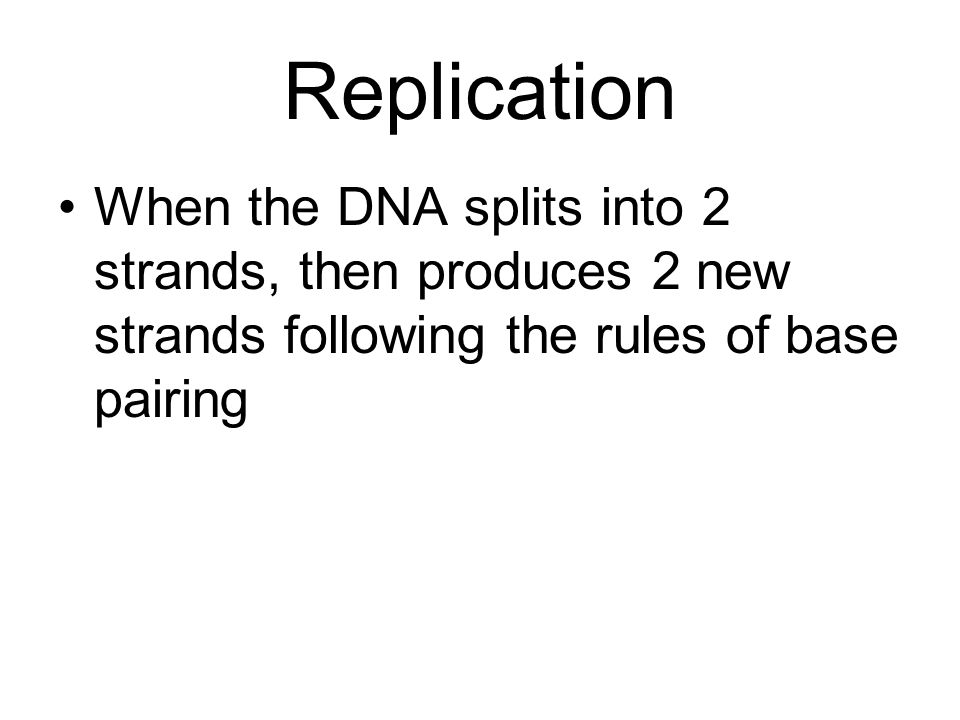 Replication When the DNA splits into 2 strands, then produces 2 new strands following the rules of base pairing.
