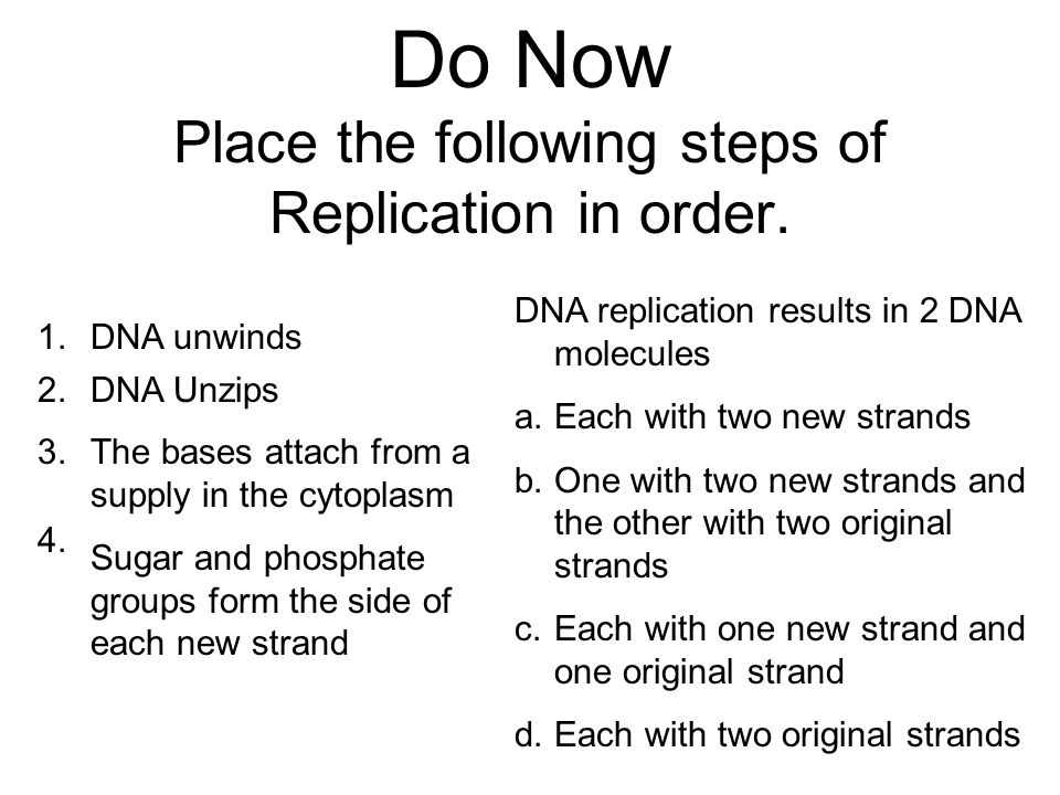 Do Now Place the following steps of Replication in order.