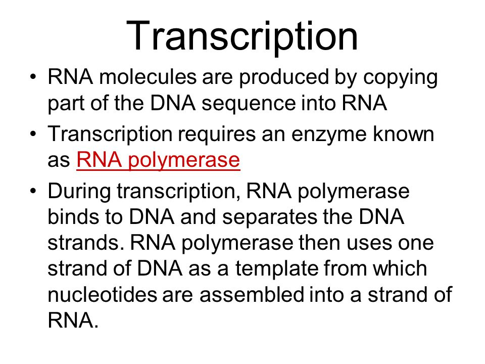 Transcription RNA molecules are produced by copying part of the DNA sequence into RNA. Transcription requires an enzyme known as RNA polymerase.