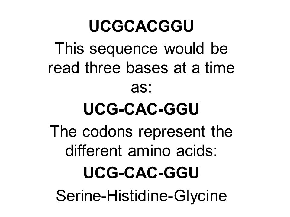 UCGCACGGU UCG-CAC-GGU