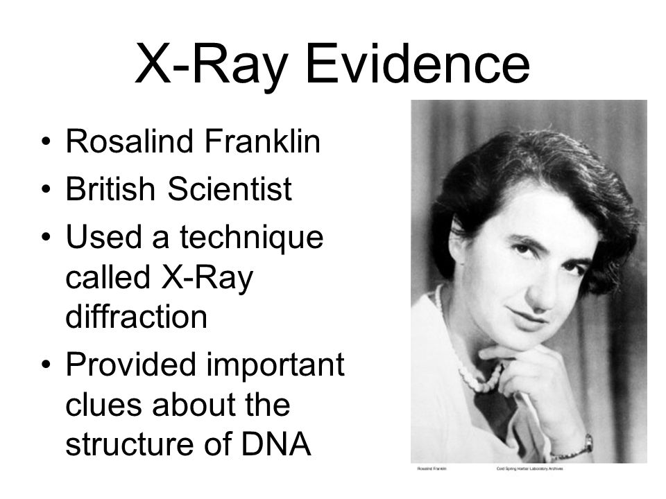 X-Ray Evidence Rosalind Franklin British Scientist