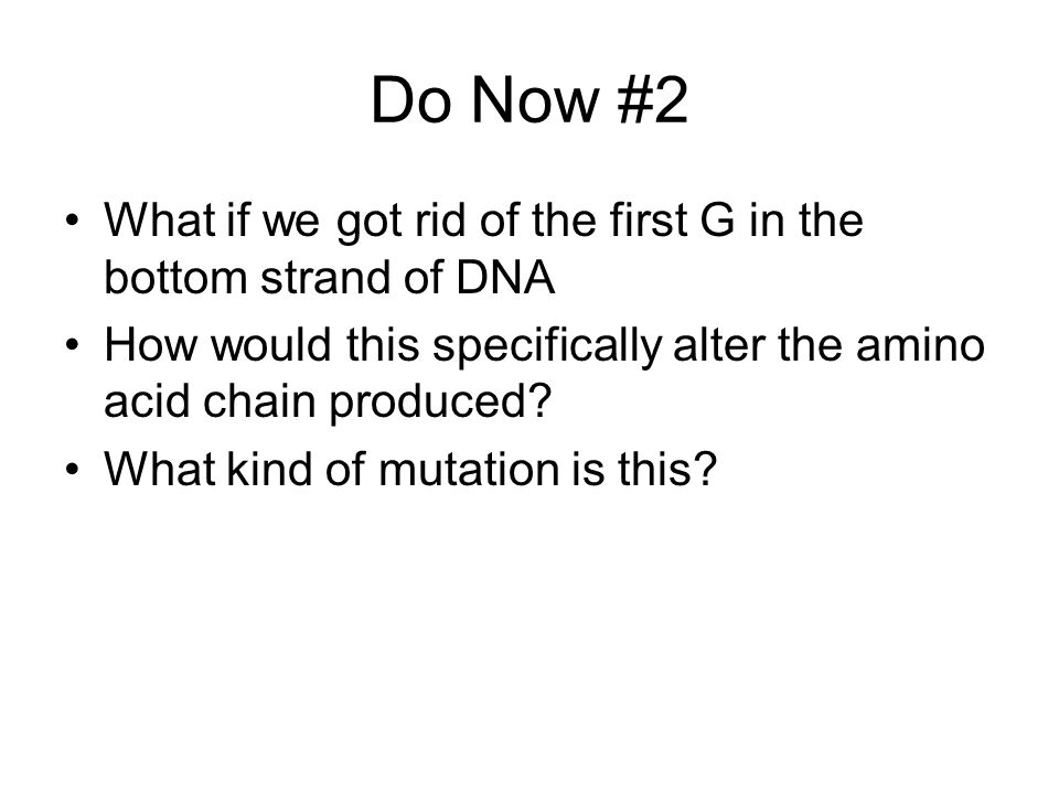 Do Now #2 What if we got rid of the first G in the bottom strand of DNA. How would this specifically alter the amino acid chain produced