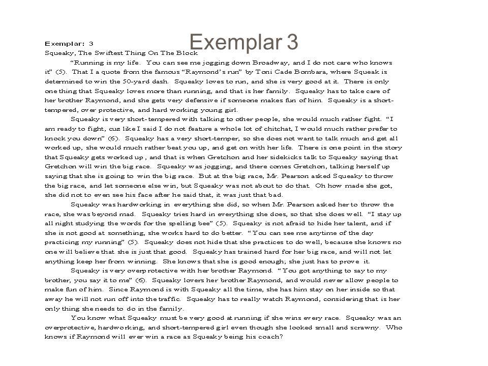 Exemplar 3