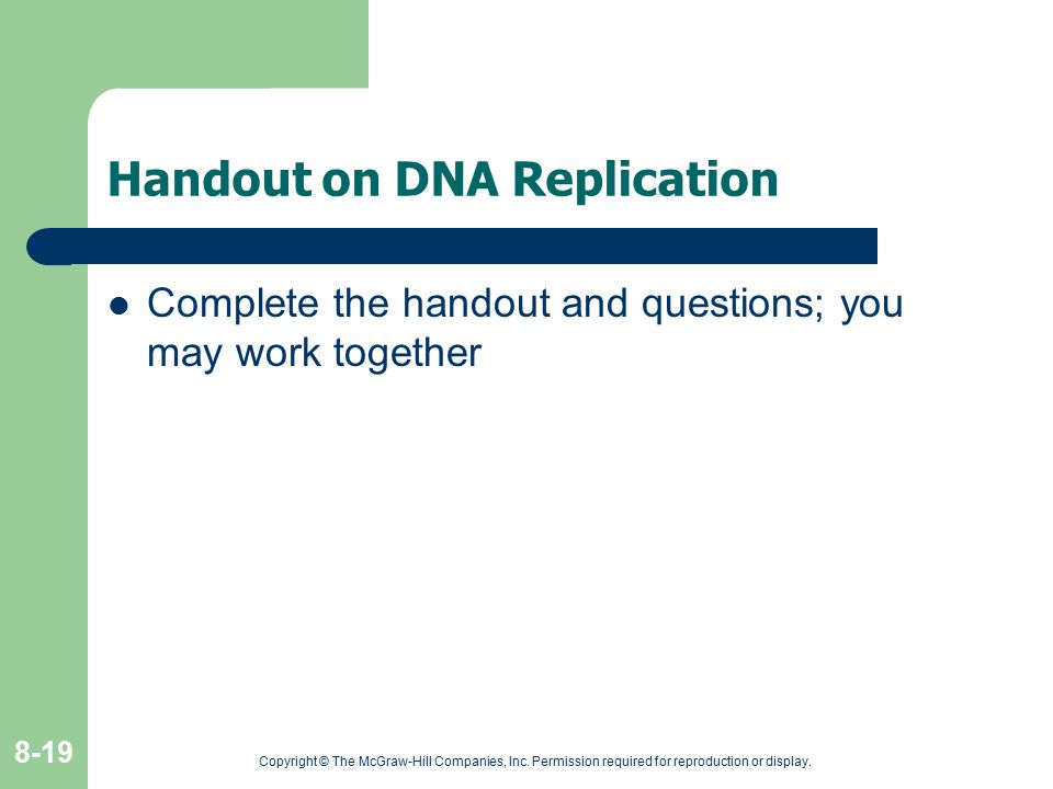 Handout on DNA Replication