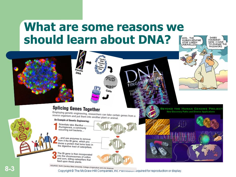 What are some reasons we should learn about DNA