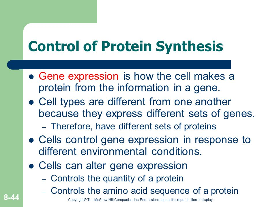 Control of Protein Synthesis