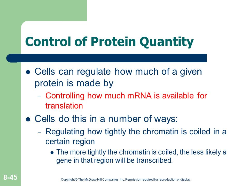 Control of Protein Quantity