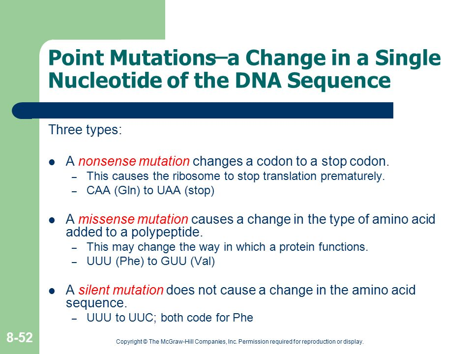 Point Mutations ̶ a Change in a Single Nucleotide of the DNA Sequence