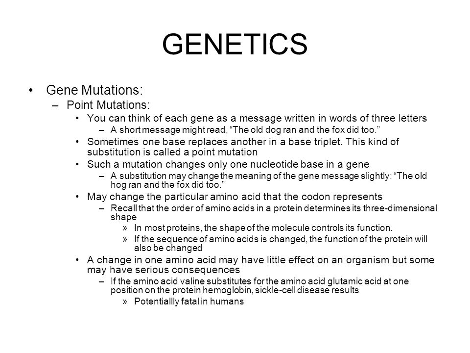 GENETICS Gene Mutations: Point Mutations: