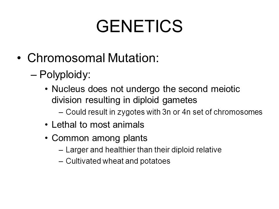GENETICS Chromosomal Mutation: Polyploidy: