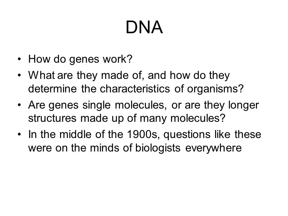 DNA How do genes work What are they made of, and how do they determine the characteristics of organisms