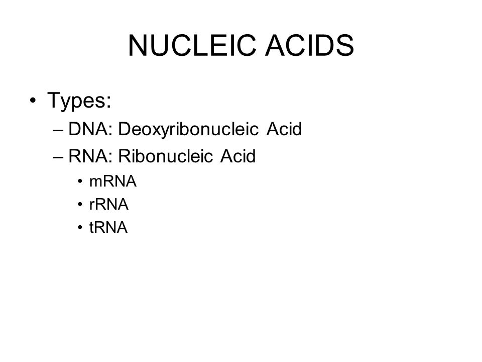 NUCLEIC ACIDS Types: DNA: Deoxyribonucleic Acid RNA: Ribonucleic Acid