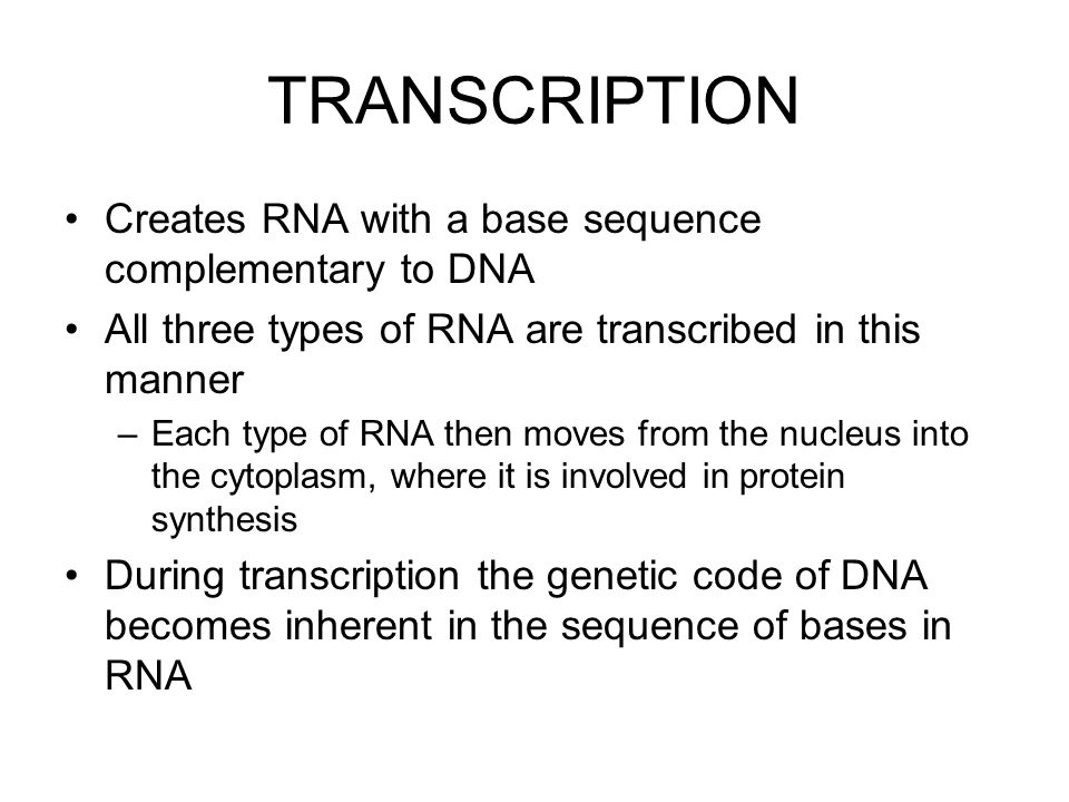 TRANSCRIPTION Creates RNA with a base sequence complementary to DNA