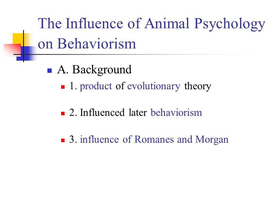The Influence of Animal Psychology on Behaviorism