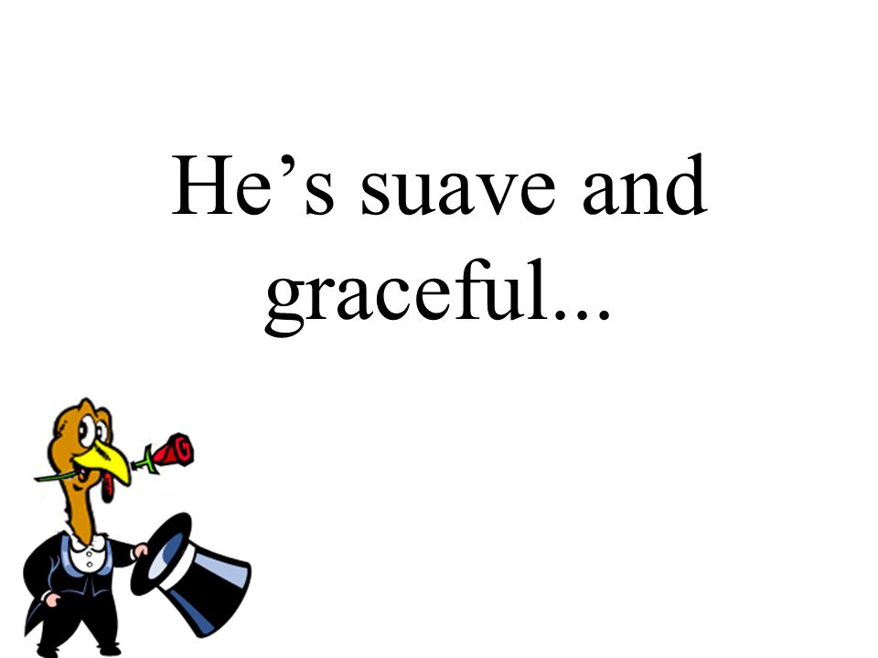He's suave and graceful...