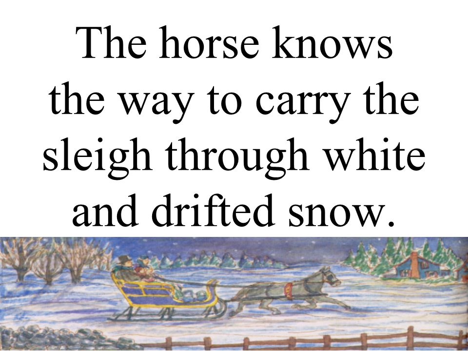 The horse knows the way to carry the sleigh through white and drifted snow.