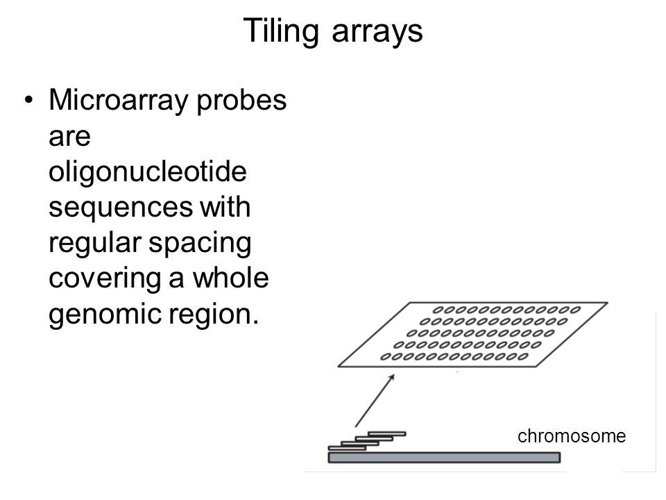 Tiling arrays Microarray probes are oligonucleotide sequences with regular spacing covering a whole genomic region.