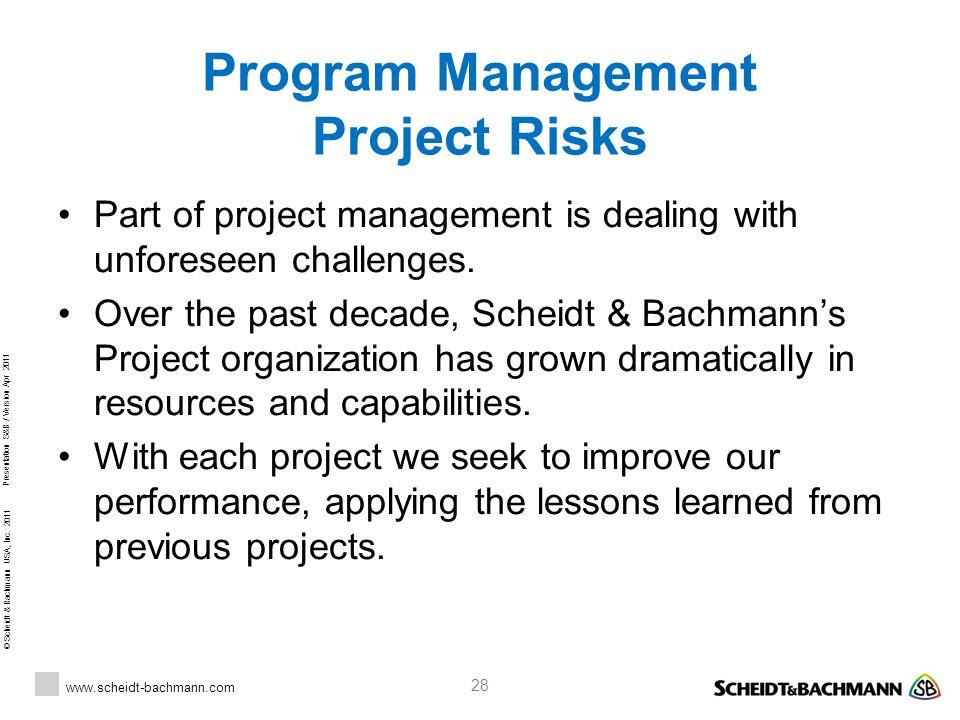 Program Management Project Risks