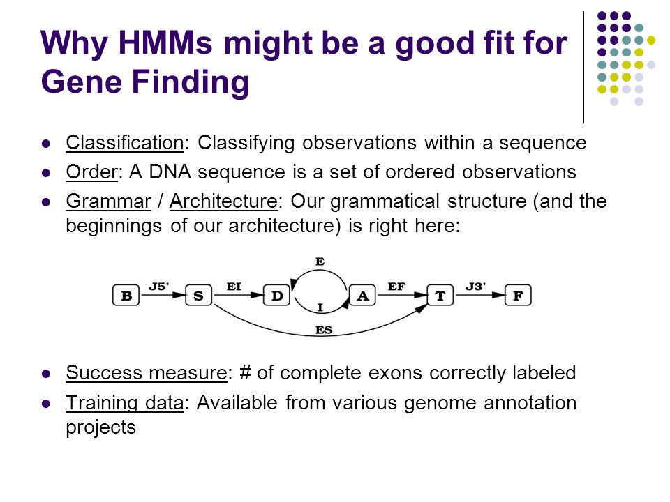 Why HMMs might be a good fit for Gene Finding