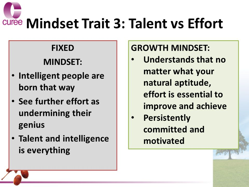 Mindset Trait 3: Talent vs Effort