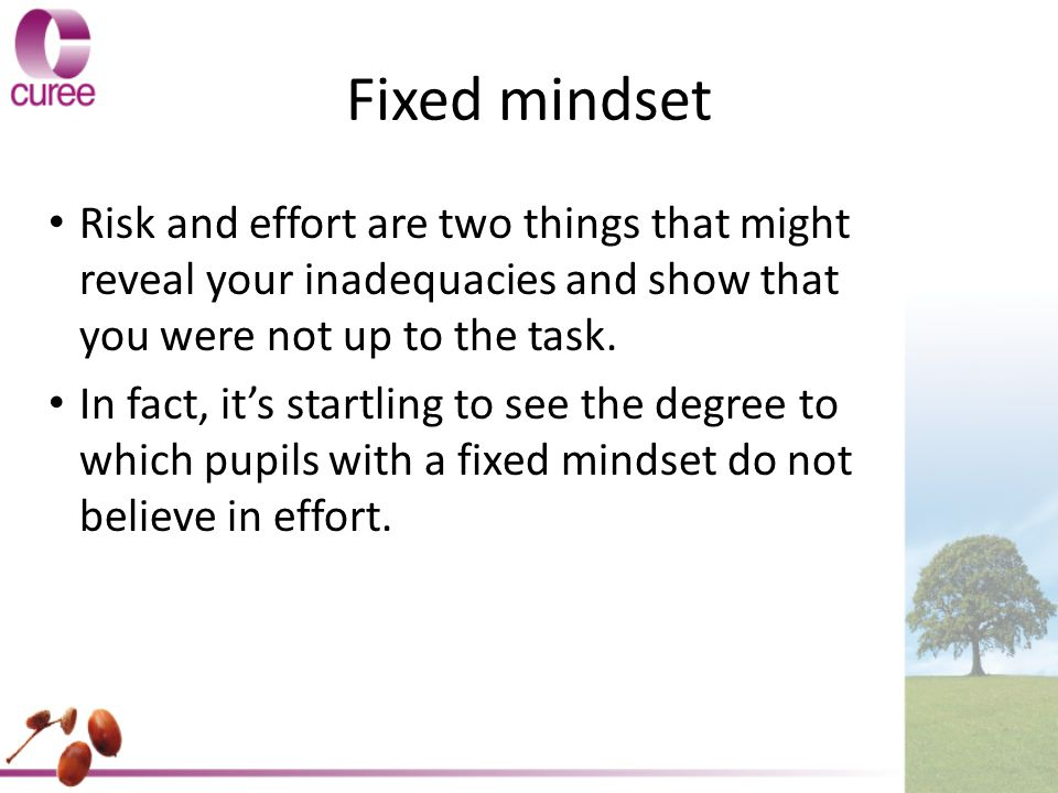 Fixed mindset Risk and effort are two things that might reveal your inadequacies and show that you were not up to the task.