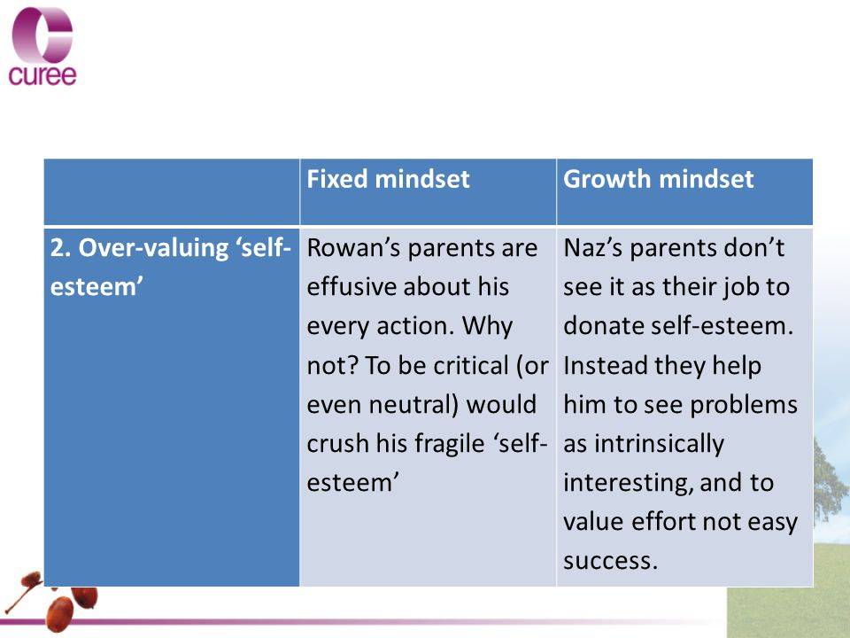 Fixed mindset. Growth mindset. 2. Over-valuing 'self-esteem'