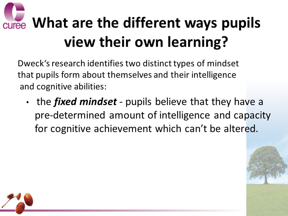 What are the different ways pupils view their own learning