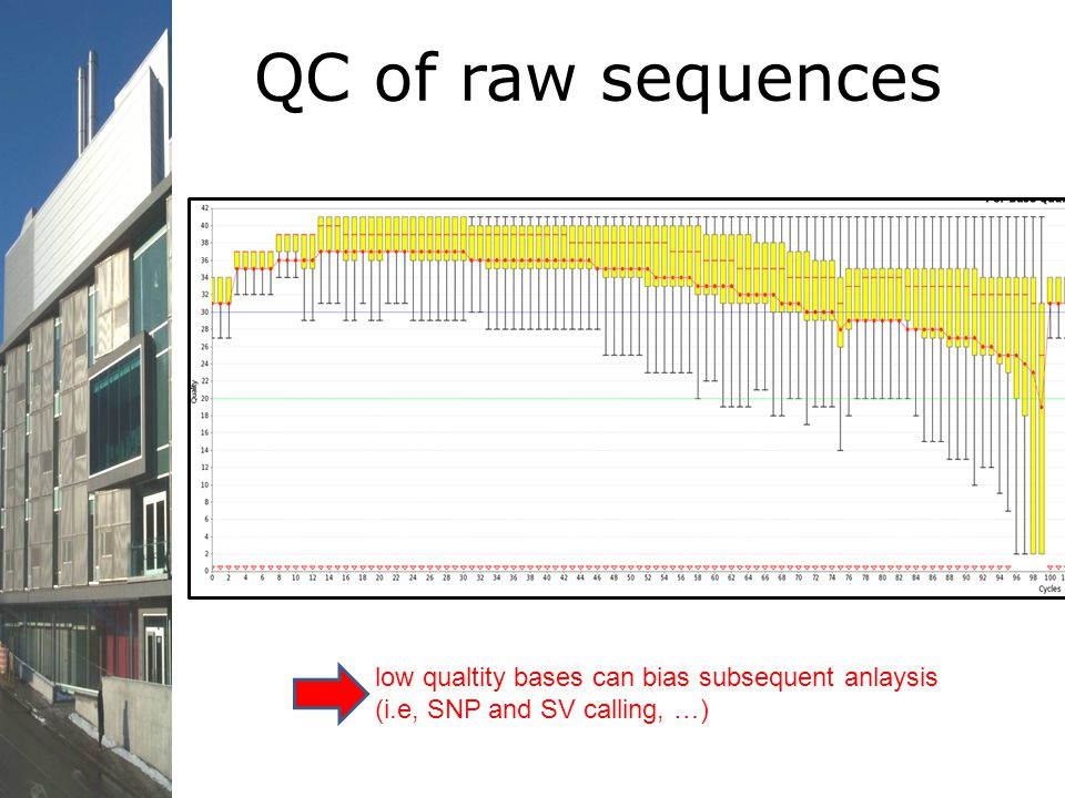 QC of raw sequences low qualtity bases can bias subsequent anlaysis