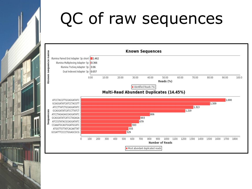 QC of raw sequences