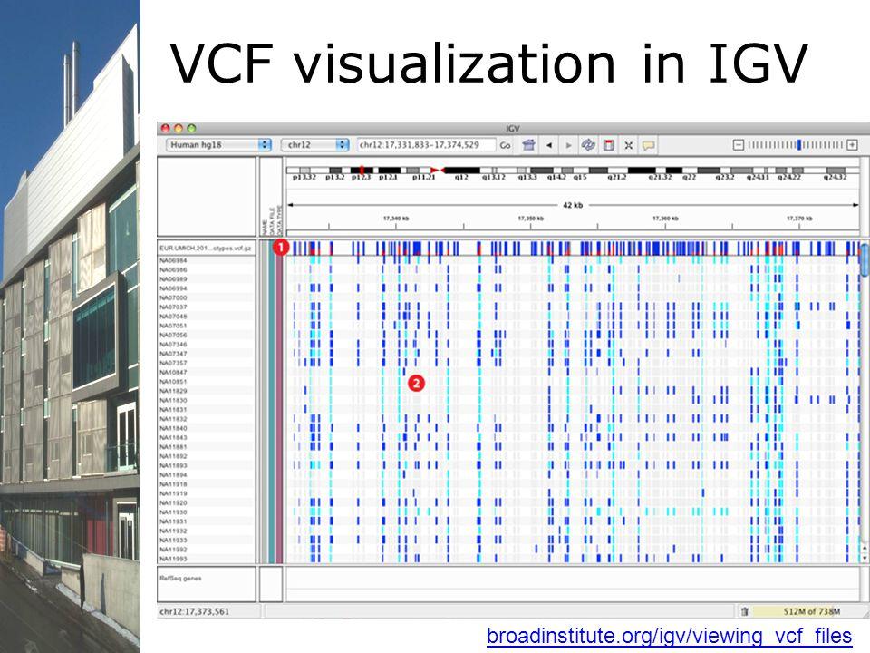 VCF visualization in IGV