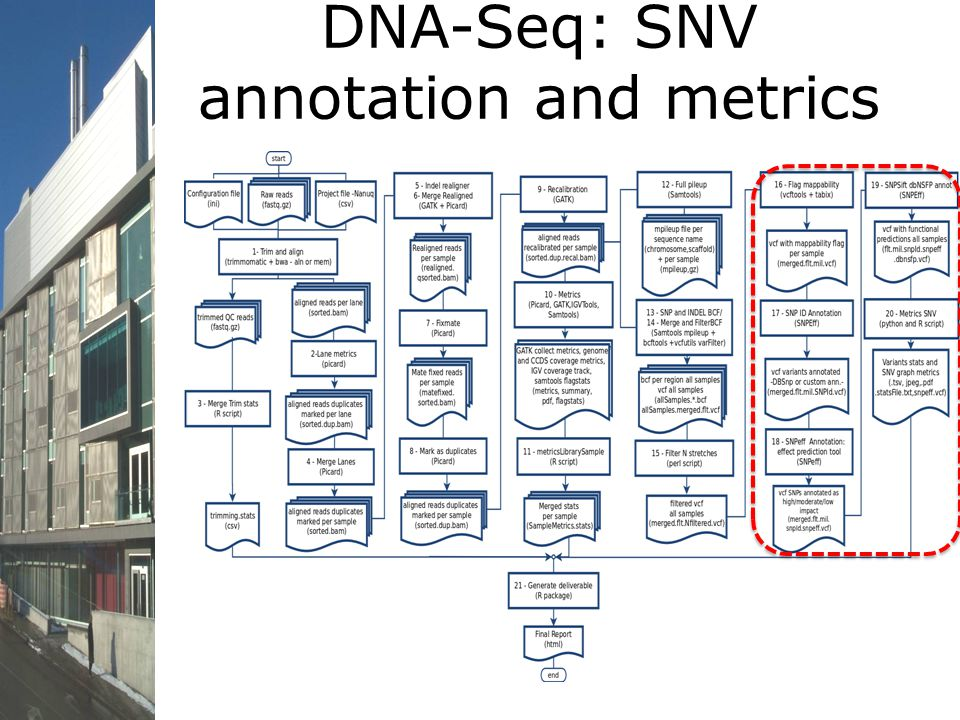 DNA-Seq: SNV annotation and metrics